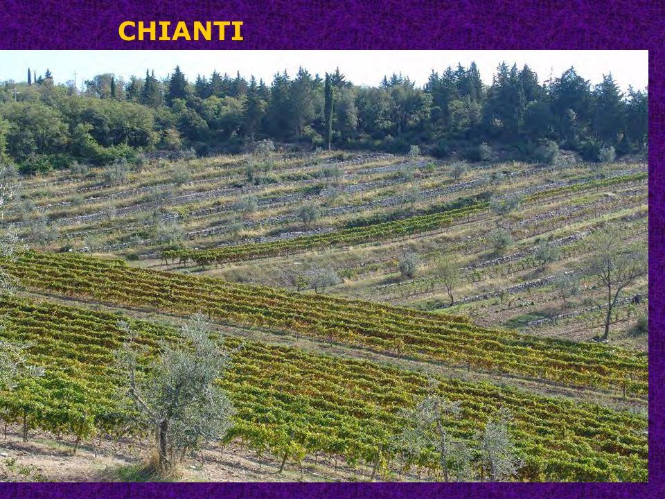 CHIANTI