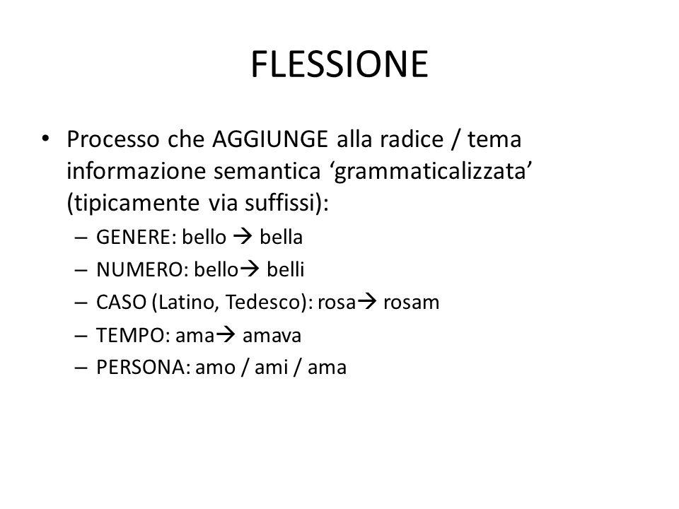 FLESSIONE Processo che AGGIUNGE alla radice / tema informazione semantica 'grammaticalizzata' (tipicamente via suffissi):