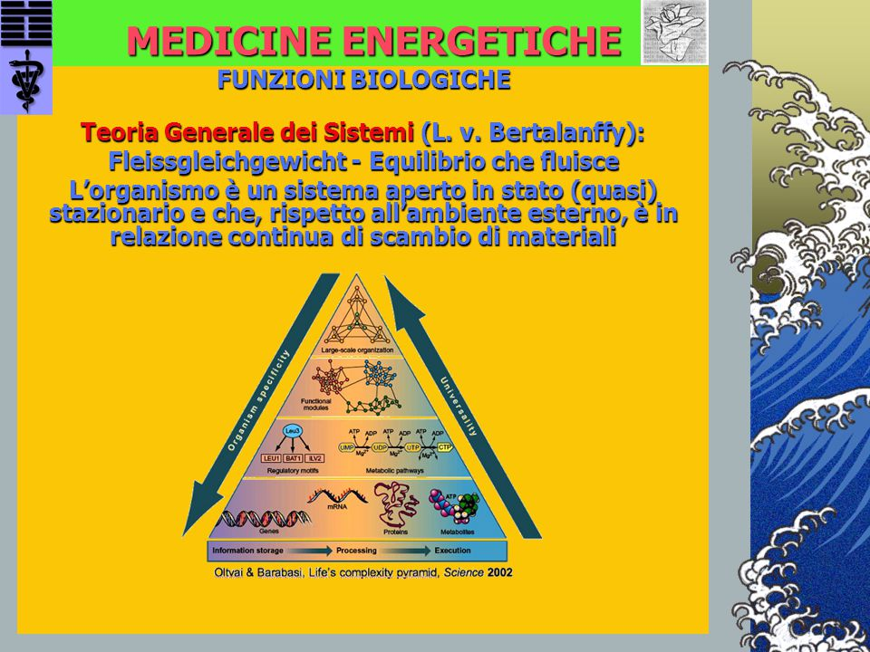MEDICINE ENERGETICHE FUNZIONI BIOLOGICHE