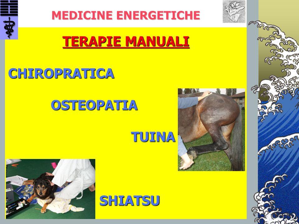 TERAPIE MANUALI CHIROPRATICA OSTEOPATIA TUINA SHIATSU