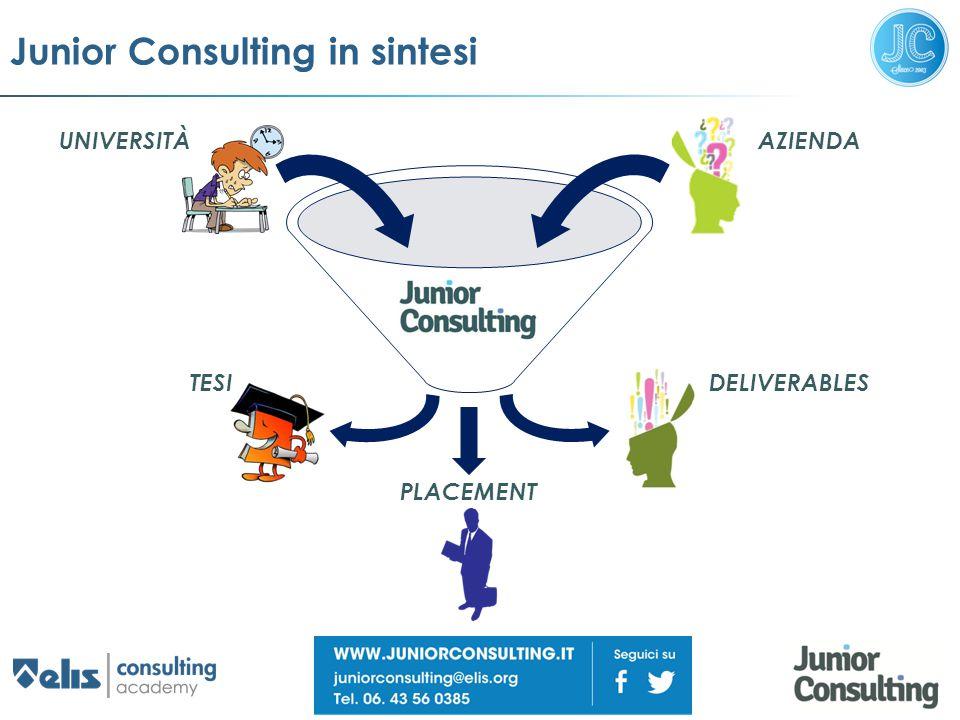 Junior Consulting in sintesi