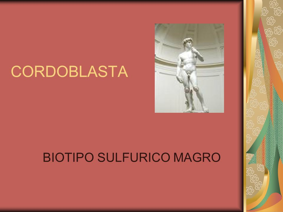 BIOTIPO SULFURICO MAGRO