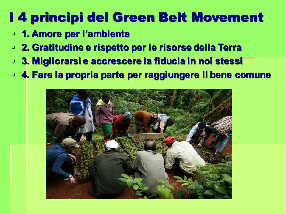 I 4 principi del Green Belt Movement