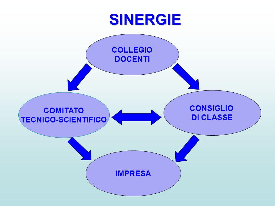 SINERGIE COLLEGIO DOCENTI CONSIGLIO COMITATO DI CLASSE