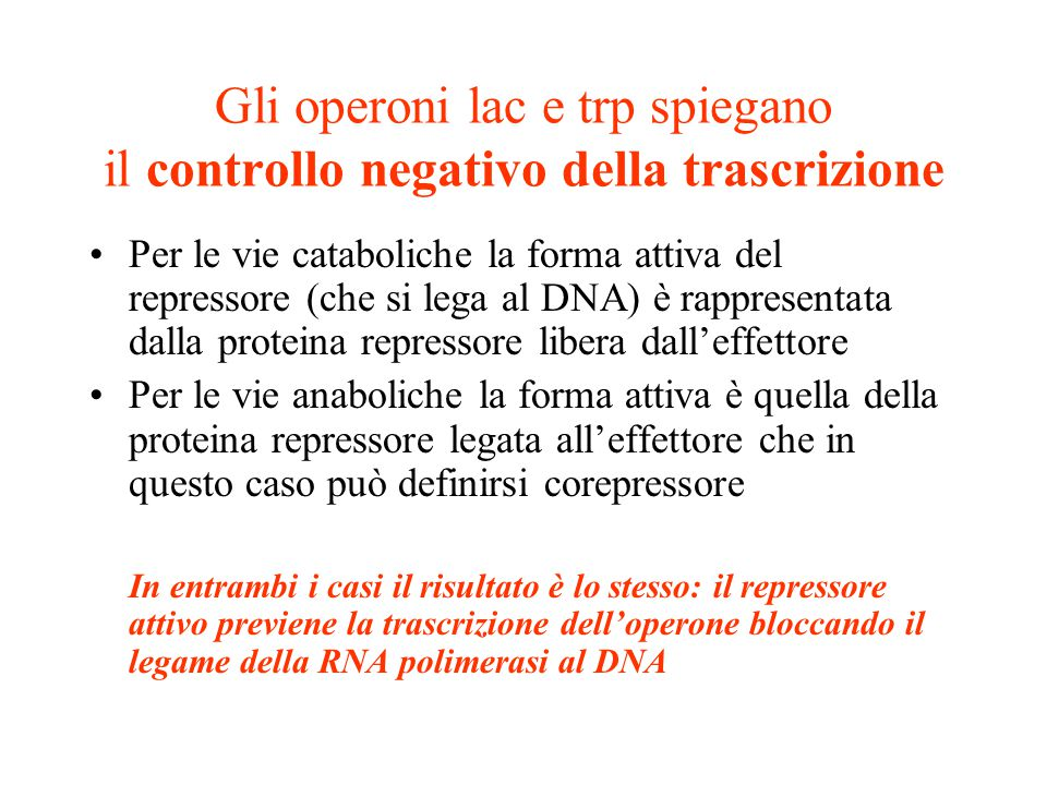 Gli operoni lac e trp spiegano il controllo negativo della trascrizione