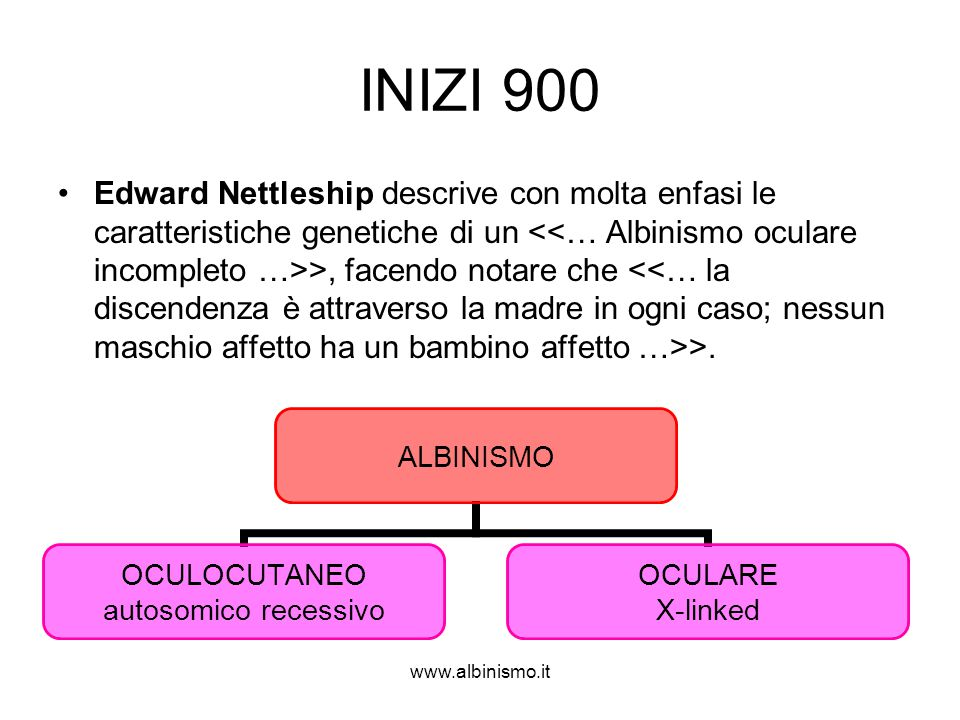 INIZI 900