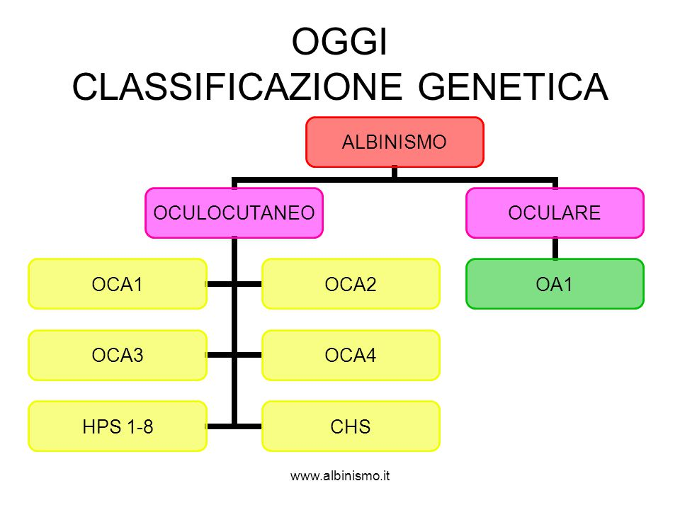 OGGI CLASSIFICAZIONE GENETICA
