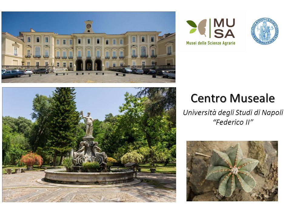 Centro Museale Università degli Studi di Napoli Federico II