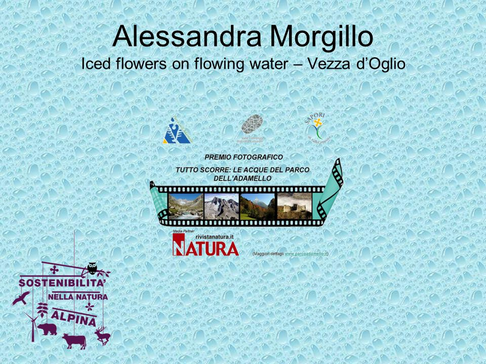 Alessandra Morgillo Iced flowers on flowing water – Vezza d'Oglio