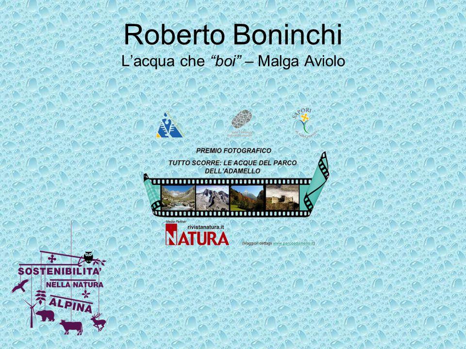 Roberto Boninchi L'acqua che boi – Malga Aviolo