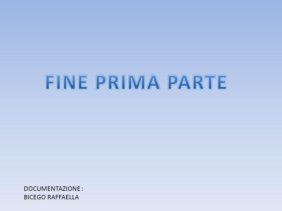 FINE PRIMA PARTE DOCUMENTAZIONE : BICEGO RAFFAELLA