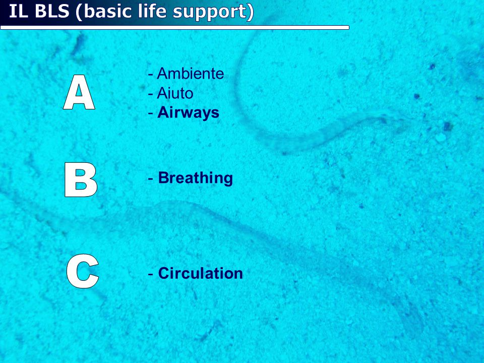 IL BLS (basic life support)