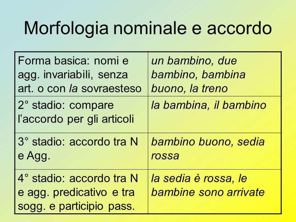 Morfologia nominale e accordo