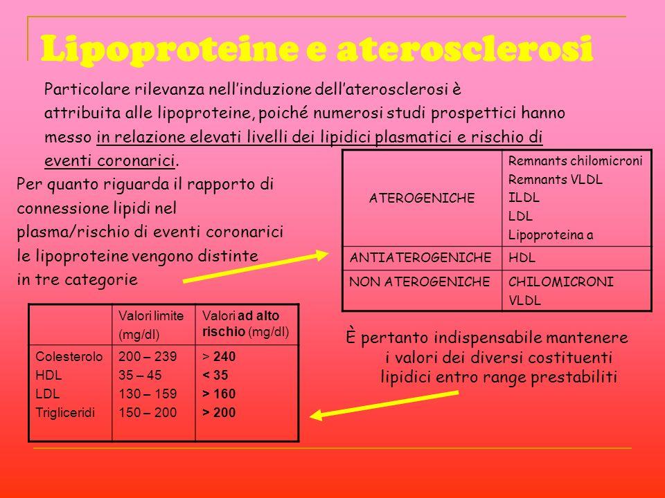 Lipoproteine e aterosclerosi