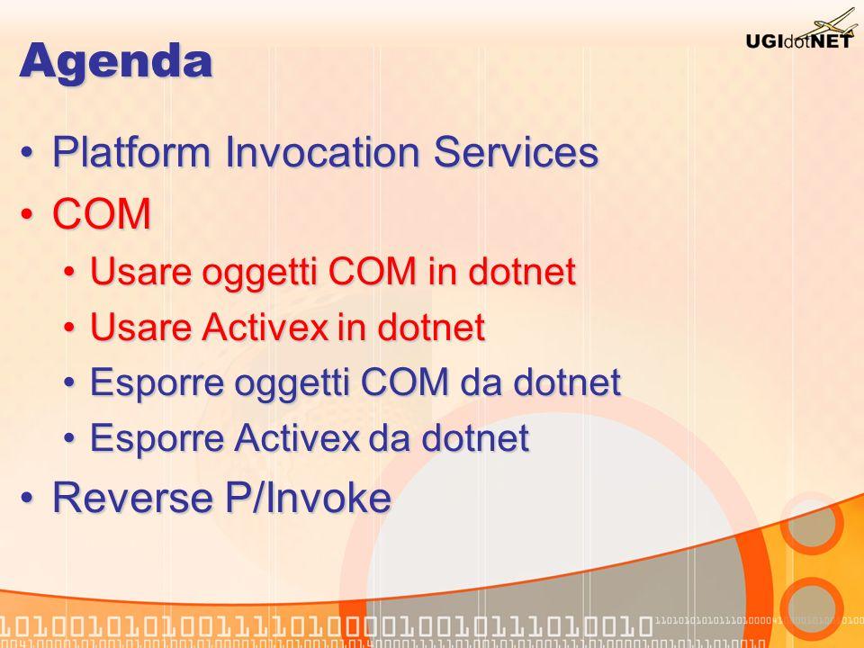 Agenda Platform Invocation Services COM Reverse P/Invoke