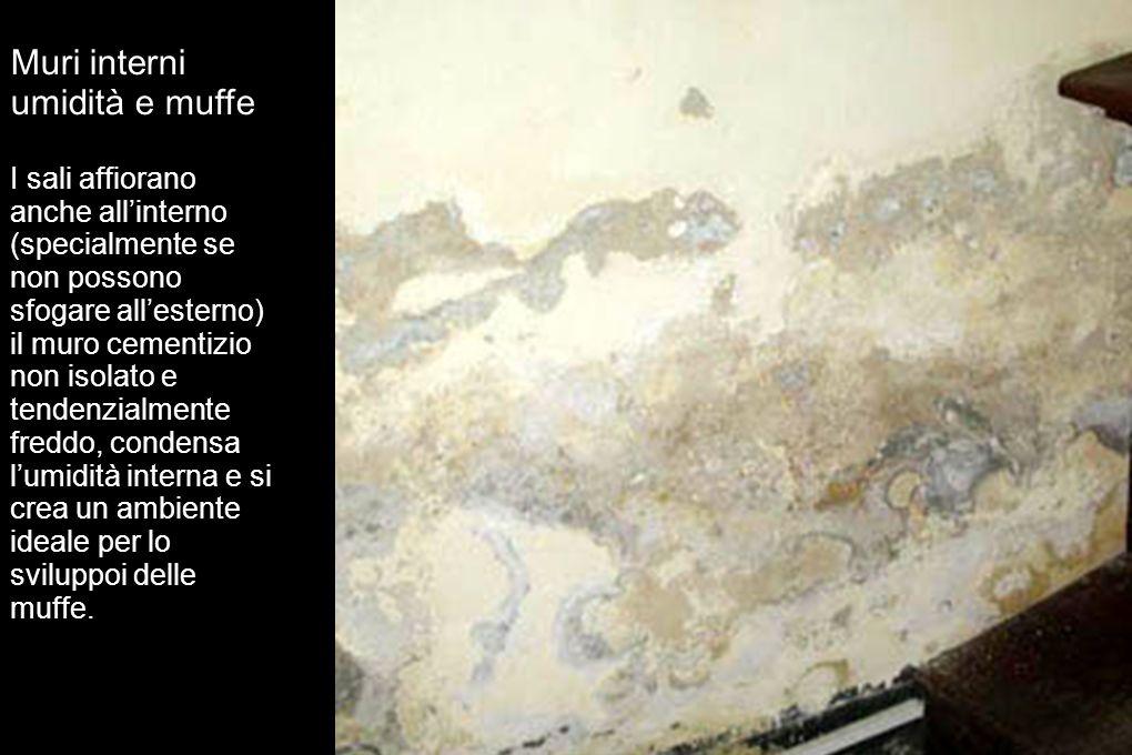 Muri interni umidità e muffe