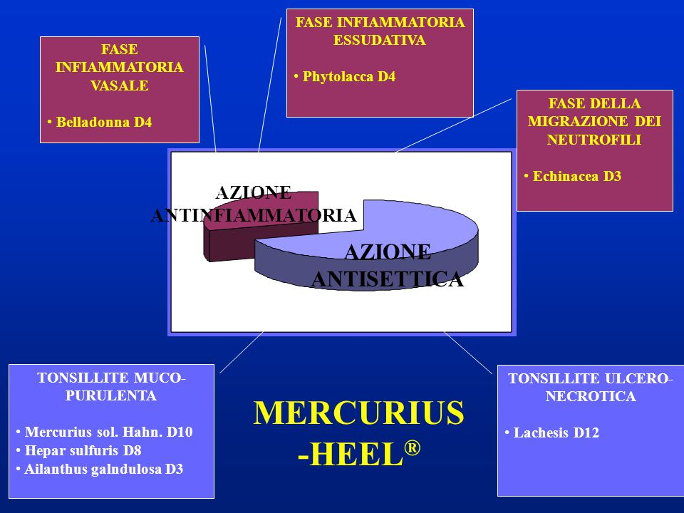 MERCURIUS -HEEL® AZIONE ANTISETTICA AZIONE ANTINFIAMMATORIA