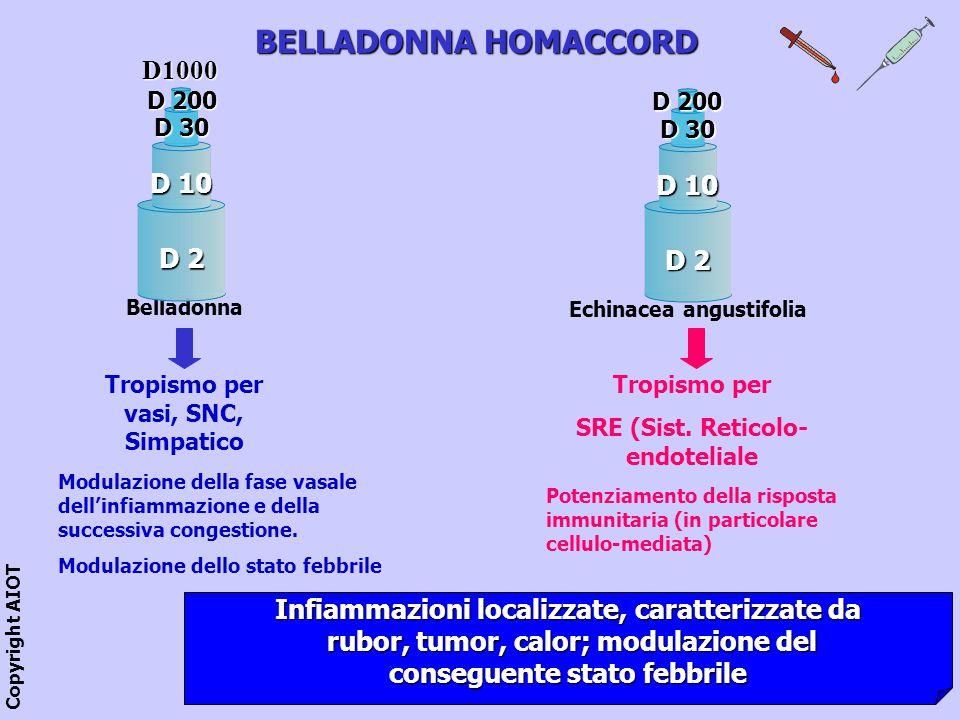BELLADONNA HOMACCORD D1000 D 10 D 10 D 2 D 2