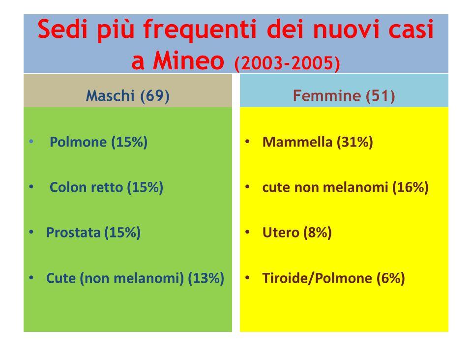 Sedi più frequenti dei nuovi casi a Mineo (2003-2005)