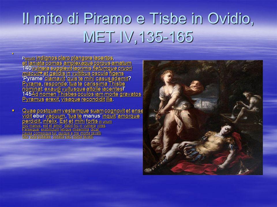 Il mito di Piramo e Tisbe in Ovidio, MET.IV,135-165
