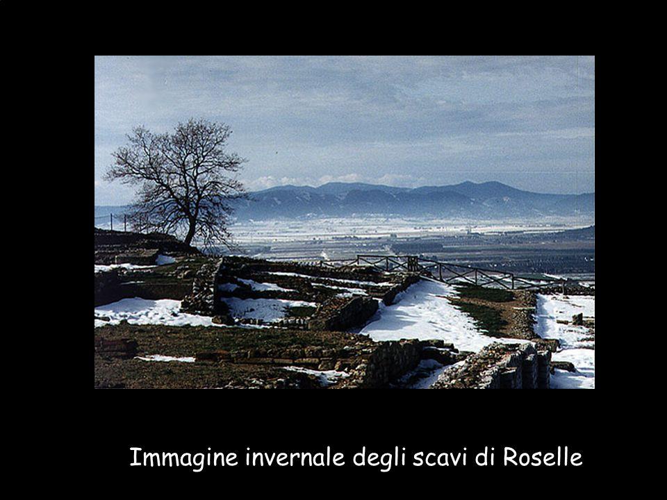 Immagine invernale degli scavi di Roselle