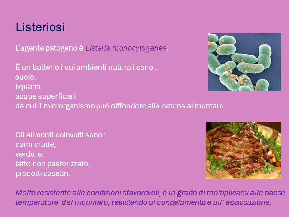 Listeriosi L'agente patogeno è Listeria monocytogenes.