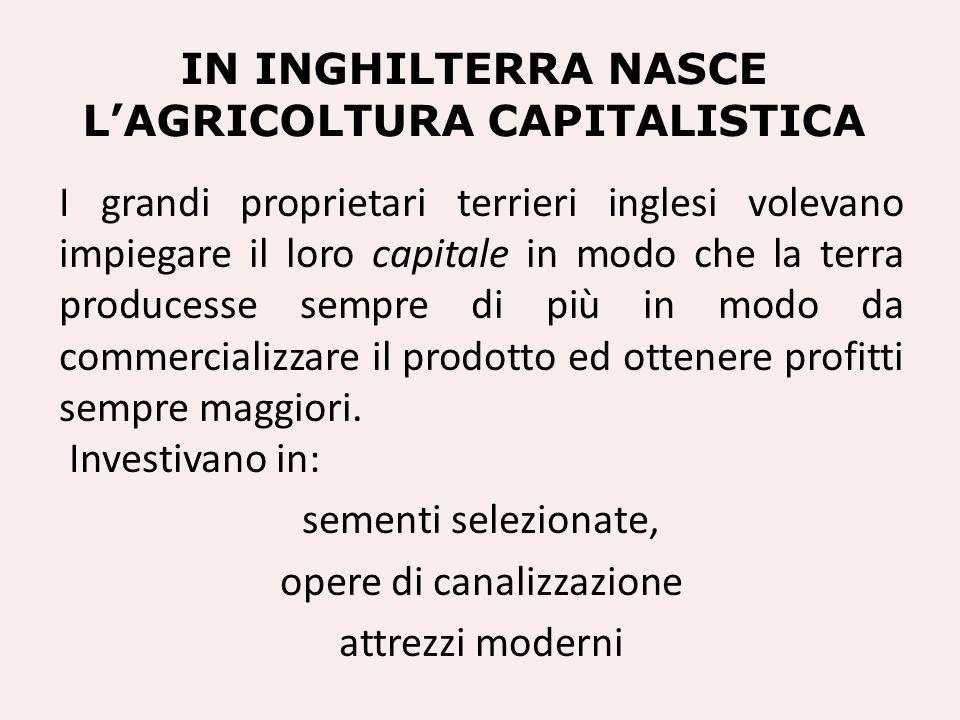 In Inghilterra nasce l'agricoltura capitalistica