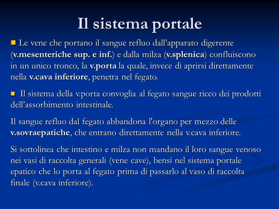 Il sistema portale