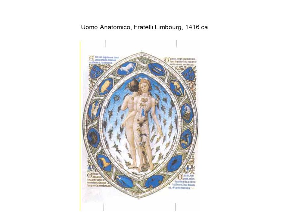 Uomo Anatomico, Fratelli Limbourg, 1416 ca