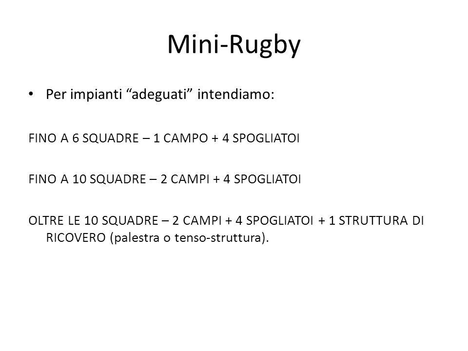 Mini-Rugby Per impianti adeguati intendiamo: