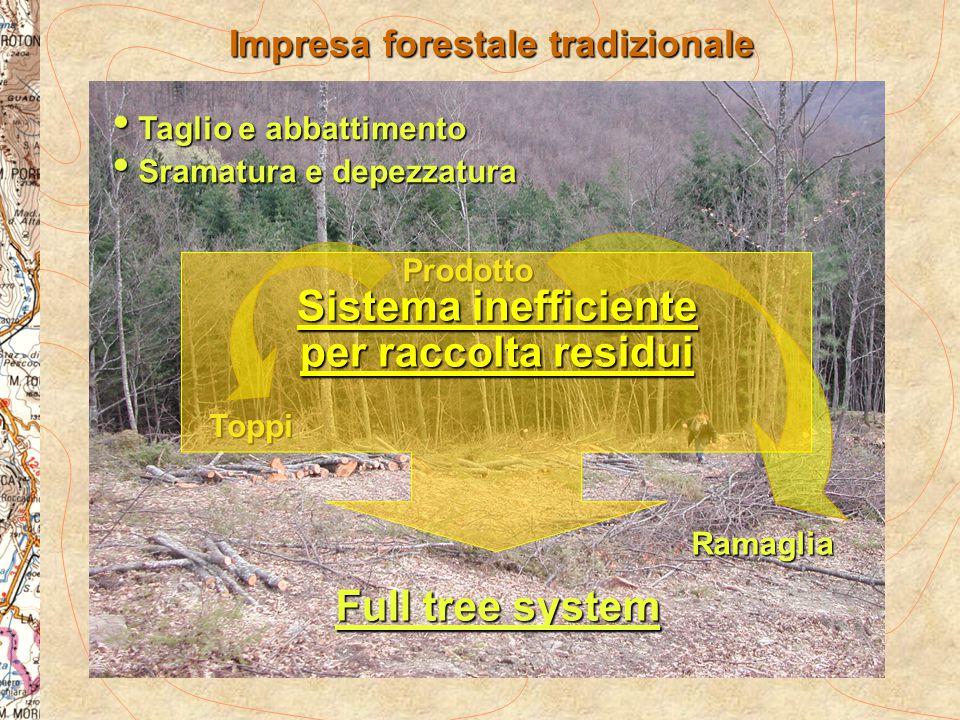 Impresa forestale tradizionale