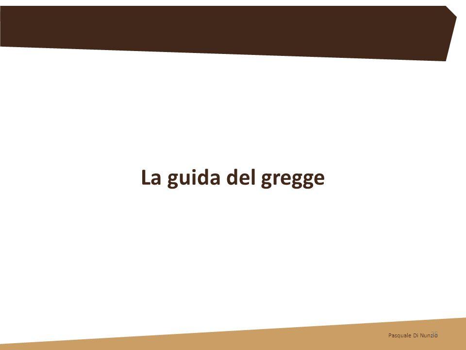 La guida del gregge Pasquale Di Nunzio