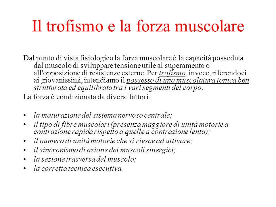 Il trofismo e la forza muscolare
