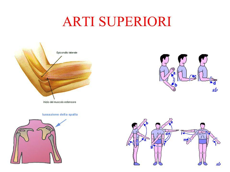 ARTI SUPERIORI