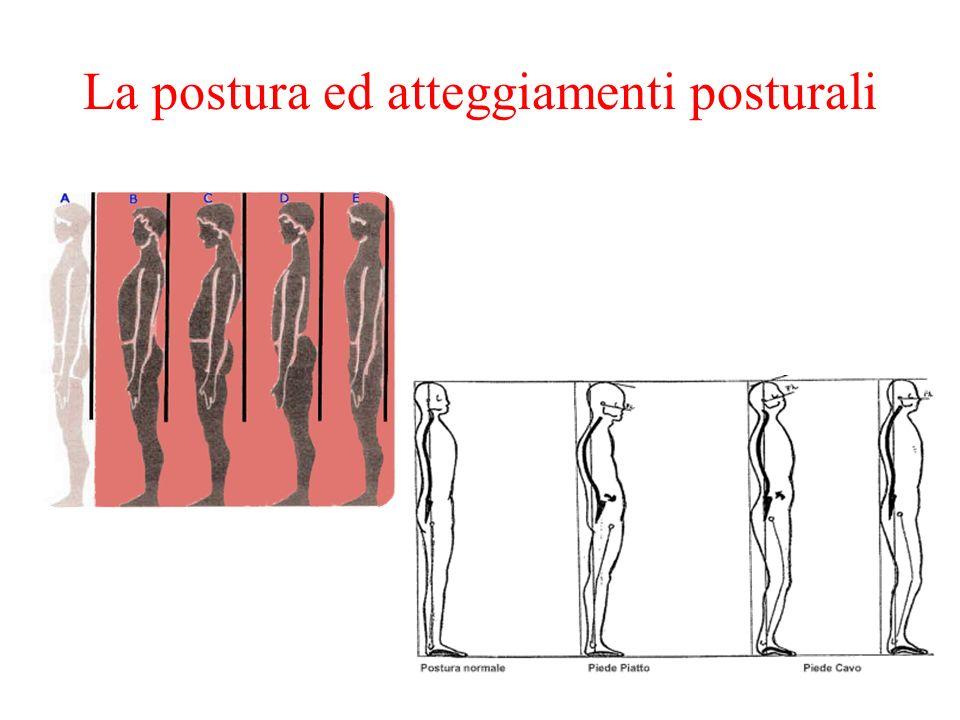 La postura ed atteggiamenti posturali