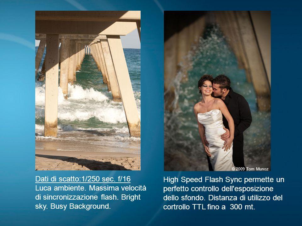 09/04/09© 2009 Tom Munoz. Dati di scatto:1/250 sec. f/16. Luca ambiente. Massima velocità di sincronizzazione flash. Bright sky. Busy Background.