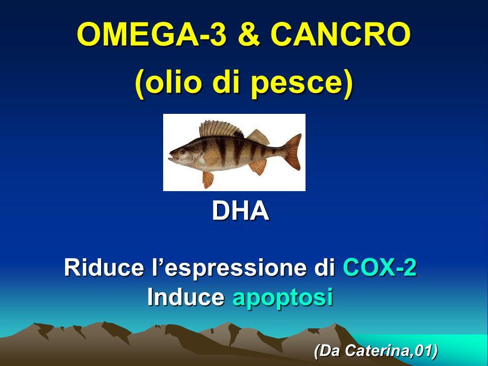 OMEGA-3 & CANCRO (olio di pesce)