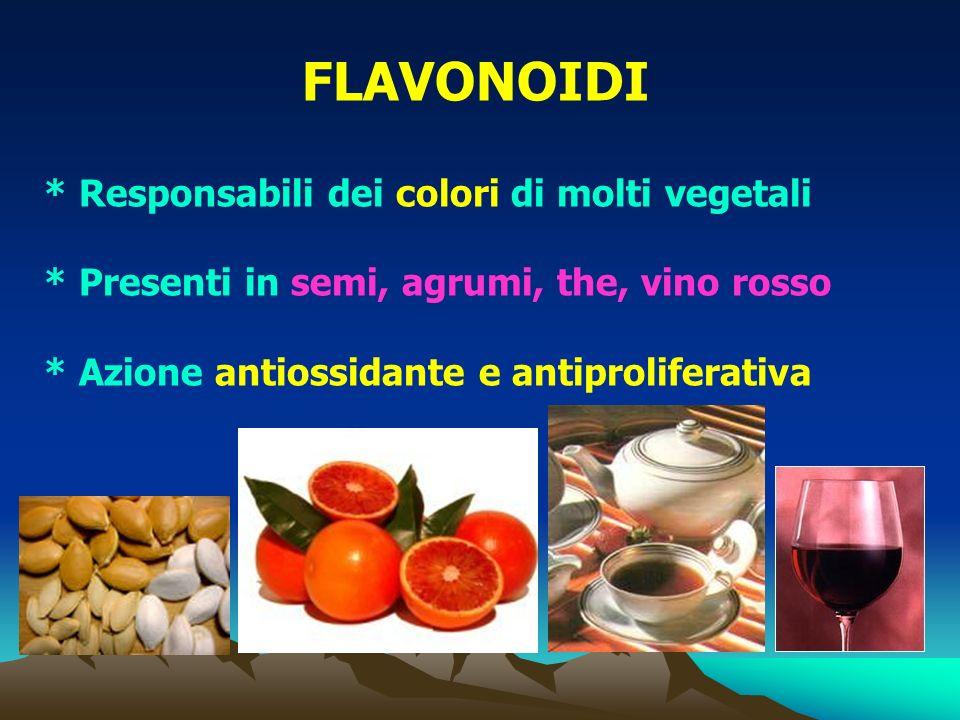* Responsabili dei colori di molti vegetali