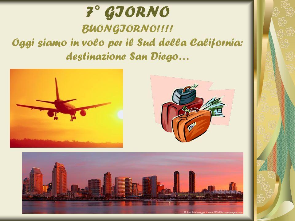 7° GIORNO BUONGIORNO!!!! Oggi siamo in volo per il Sud della California: destinazione San Diego…