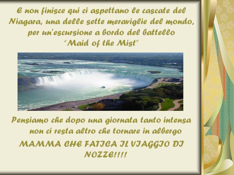 MAMMA CHE FATICA IL VIAGGIO DI NOZZE!!!!
