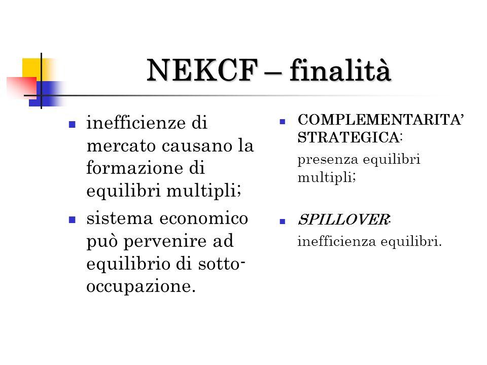 NEKCF – finalità inefficienze di mercato causano la formazione di equilibri multipli;