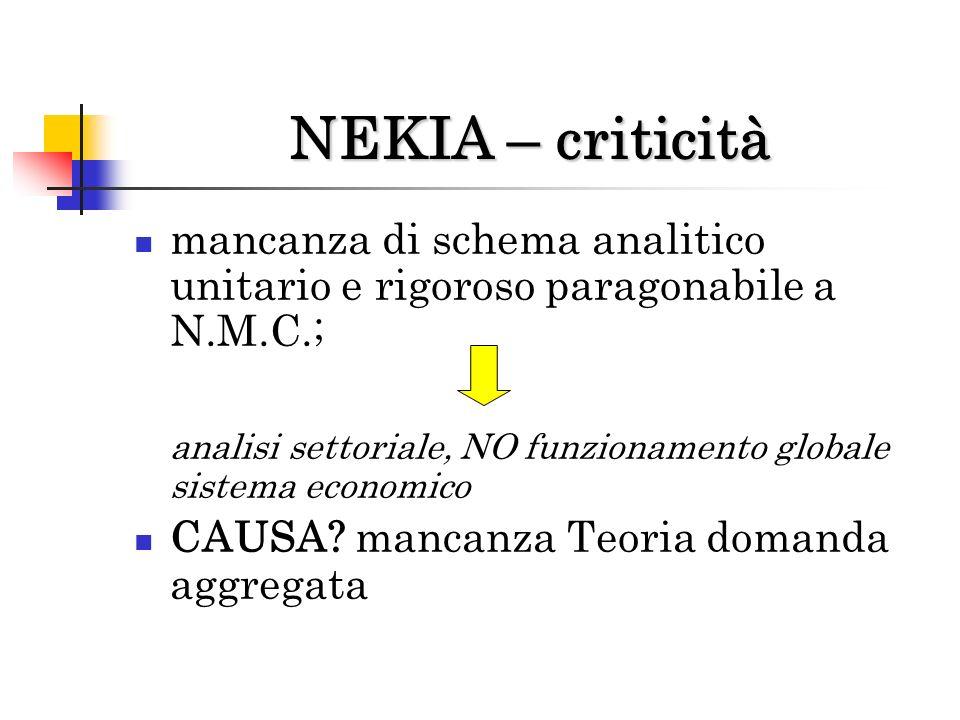 NEKIA – criticità mancanza di schema analitico unitario e rigoroso paragonabile a N.M.C.;