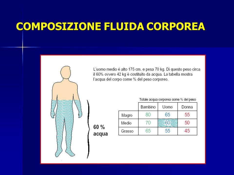 COMPOSIZIONE FLUIDA CORPOREA