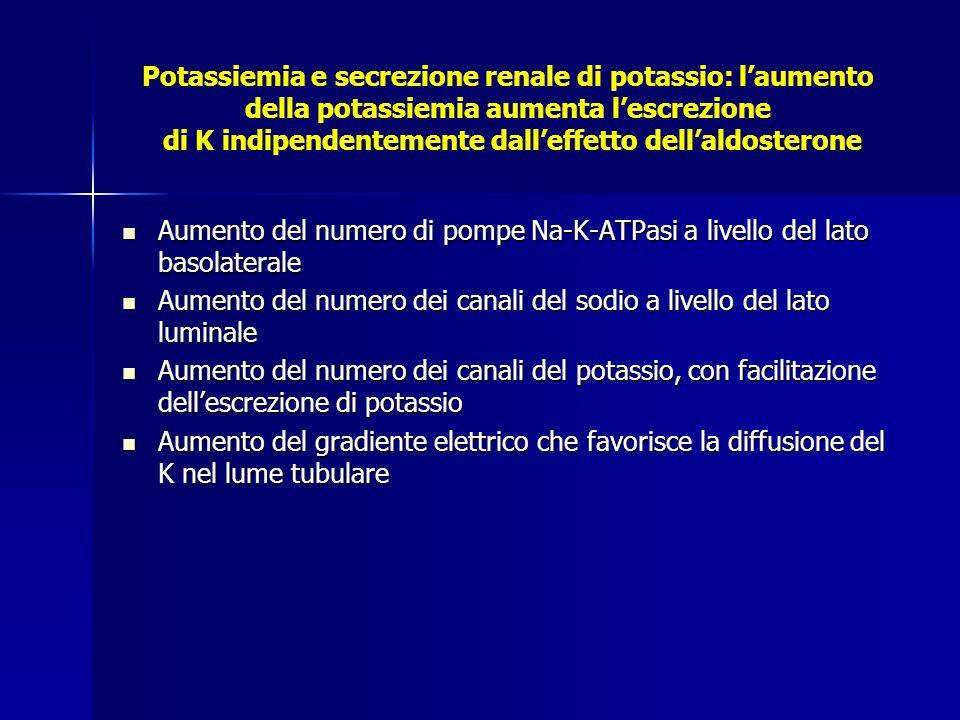 Potassiemia e secrezione renale di potassio: l'aumento della potassiemia aumenta l'escrezione di K indipendentemente dall'effetto dell'aldosterone