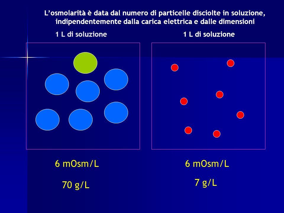 L'osmolarità è data dal numero di particelle disciolte in soluzione, indipendentemente dalla carica elettrica e dalle dimensioni