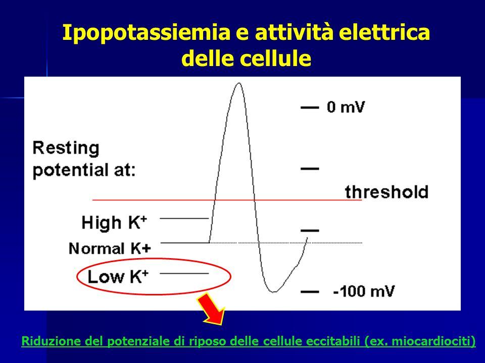Ipopotassiemia e attività elettrica delle cellule