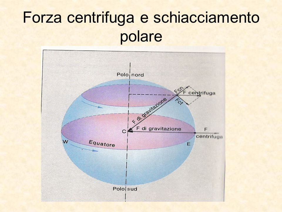 Forza centrifuga e schiacciamento polare