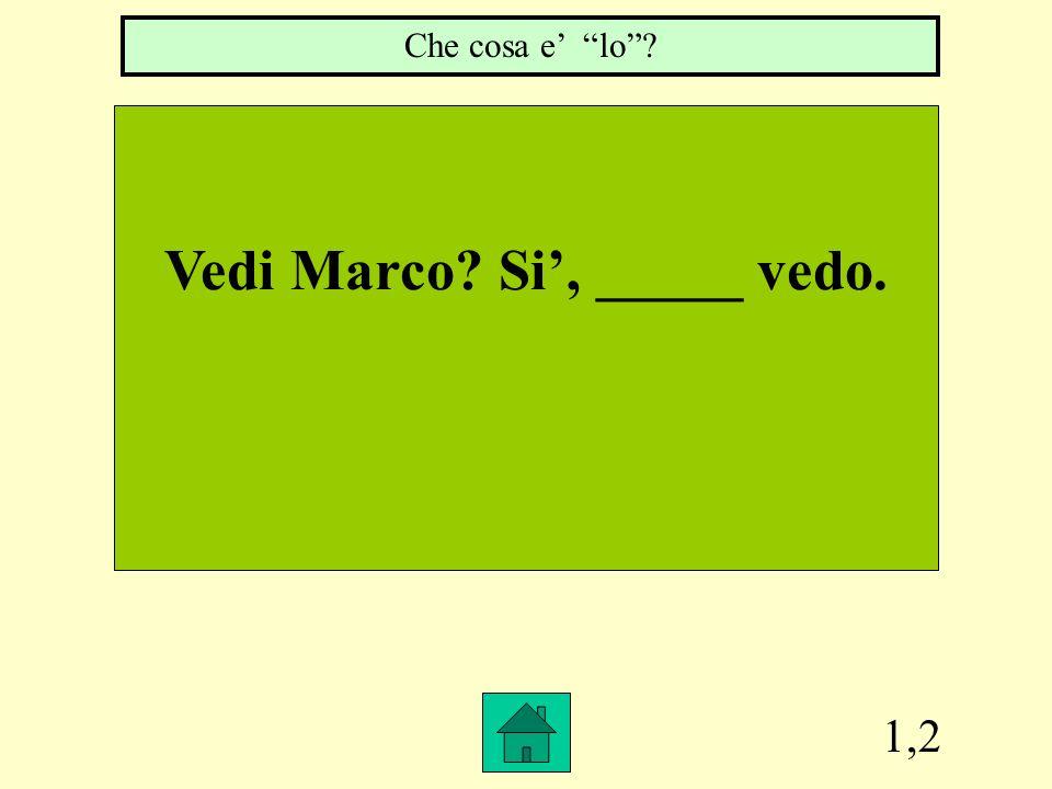 Vedi Marco Si', _____ vedo.