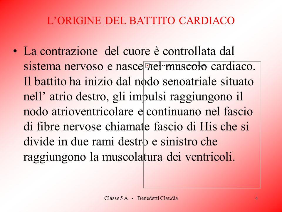 L'ORIGINE DEL BATTITO CARDIACO