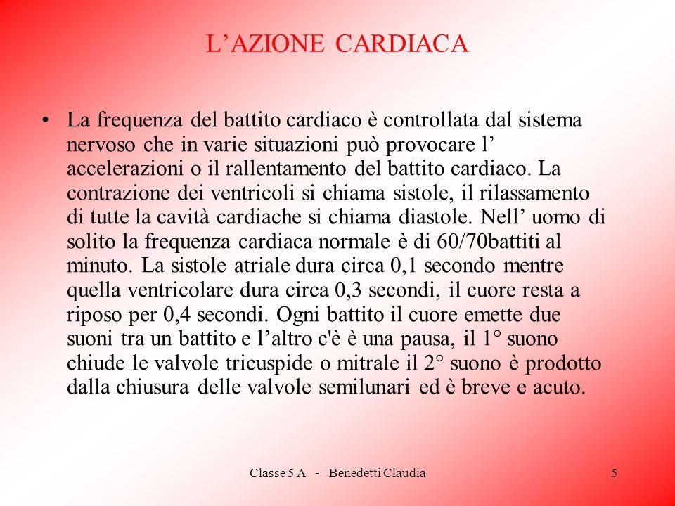 Classe 5 A - Benedetti Claudia